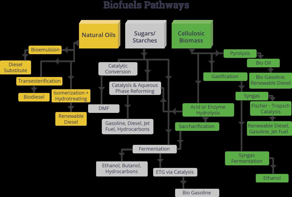 Biofuels-web