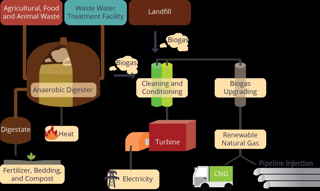 Biogas-new